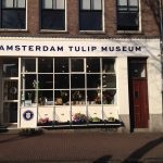 Tulpenmuseum Amsterdam